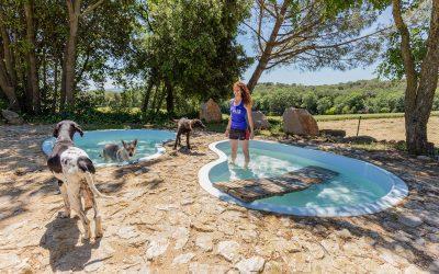 Alis-piscina-9004